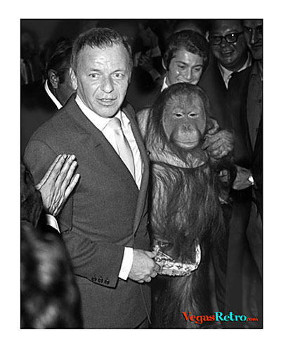 Photo of Ol' Blue Eyes, Frank Sinatra with a chimpanzee