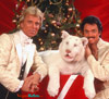 Photo of Siegfried & Roy with baby white tiger at Christmas
