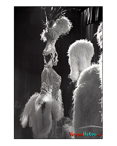 Imagae of Tropicana Showgirls from sidestage